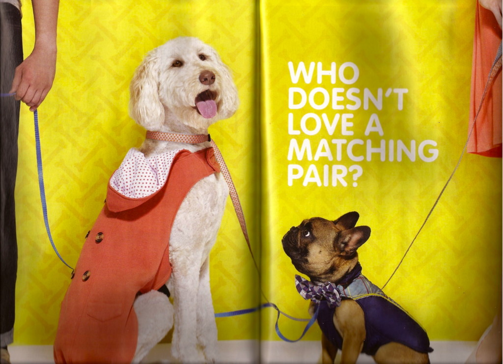 KatyK9 performs pet wrangling services for Chatelaine Magazine